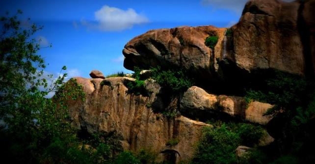 Hike Mt. Elgon National Park